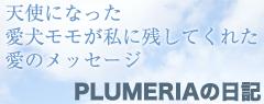 PLUMERIAの日記
